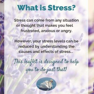 Anti-Stress Info Sheet